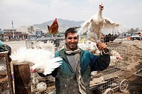 chicken sales man in kabul, afghanistan