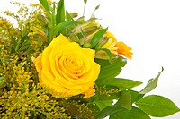 bouquet of yellow flowers with rose in closeup over white background