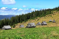 Image of a traditional mountain village in Apuseni MountainsRomania. The houses are made of wood without using a single piece of iron.