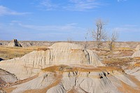 Senic desert terrain in the badlands of Brooks, Alberta, Canada