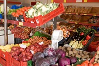 Fresh, various colourful vegetables in supermarkets, ready for seal