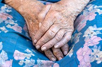 close_up of wrinkled hands of an old peasant woman from bohemia, czech republic