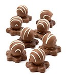 Delicious chocolate pralines on white