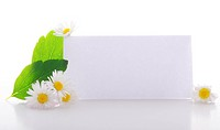 blank paper card with copyspace and green nature