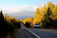 Picture of an asphalt road in autumn