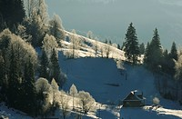 lonely house in Dzembronya landscape in Ukraine Carpathian Mountains