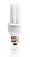 Energy efficient light bulb isolated on the white background