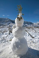 Snowman in fresh snowfall along Highway 33 north of Ojai, California