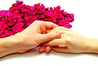 Women Hands on Color Rose Petals