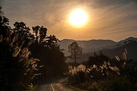 Street, sunset, landscape, backlit, Northern Thailand, Thailand, Asia