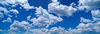 These are cumulus mediocris clouds.