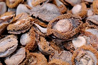 Close up of dried abalone