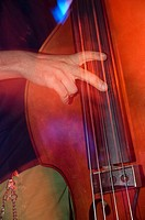 Musician with bass