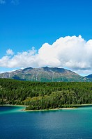 Emerald Lake, Sky, and Mountains, near Carcross, Yukon Territory, Canada, Copy Space, Vertical