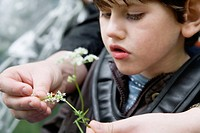 Child with cytomegalovirus syndrome looking at a ladybird on a flower,