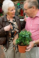 Older couple with a tomato plant outside a green grocer shop