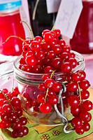 currants for jelly