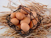 basket full of eggs