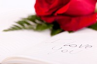 Red rose on planner, 'I love you' writte on it