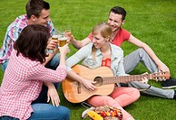 Group of young people at a barbecue with beer and a guitar in the garden