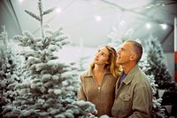 Couple Studying Christmas Tree