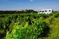 Camper van in the vineyards, Provence, France