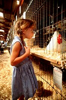 Little Girl Looking at Hens