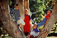 Portrait of kids in a tree