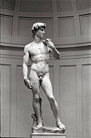 Statue of David by Michaelangelo
