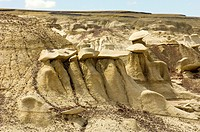 Bisti/De-Na-Zen Wilderness in Northwest New Mexico