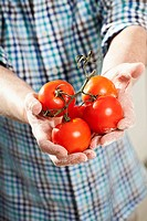 Germany, Berlin, Senior man holding tomatoes