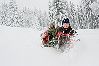 Austria, Salzburg County, Boy and girl pulling christmas tree in snow