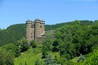 Anjony Castle, Parc Naturel Regional des Volcans d'Auvergne, Auvergne Volcanoes Regional Nature Park, Cantal, France, Europe