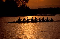 Women´s Rowing Team at Sunset