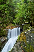 Waterfall at the source of Rio Savegre, San Gerardo de Dota, Costa Rica, Central America