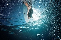 surfer underwater close_up