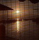 View Through Blinds on Lake