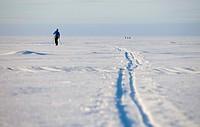 Cross-country skier on sea ice  Location Nallikari Gulf of Bothnia Bothnian Bay Baltic Sea Oulu Finland Scandinavia Europe