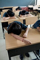 Kids Sleeping at Their Desks