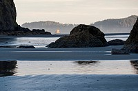 USA, Washington, Olympic National Park, Sea stacks at Ruby Beach in morning