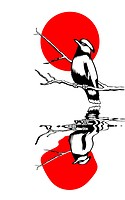bird on branch silhouette on solar background