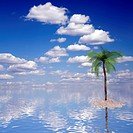 single palm on island with a beautiful sea and sky