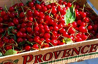 France, Provence, Cherries harvested in crate