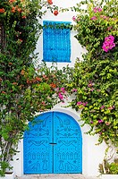 Door, Village of Sidi Bou Said near Tunis  Tunisia.