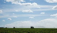 Crop irrigation in South Florida
