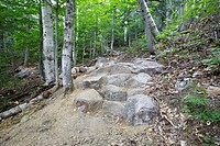 Presidential Range–Dry River Wilderness - Newly built stone steps along the Davis Path during the summer months in the White Mountains, New Hampshire ...