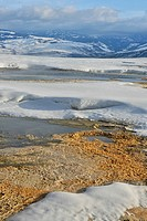 Steam and snow above Canary Spring, Yellowstone NP, Mammoth Hot Springs, Wyoming, USA