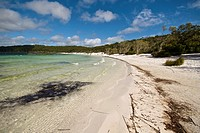 Lake Birrabeen, a fresh water lake on Fraser Island Great Sandy National Park, Queensland, Australia