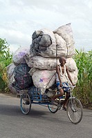 indian man transport big bags filled with plastic bottles on his rickshaw in dhapa district  kolkata  west bengal  india  asia