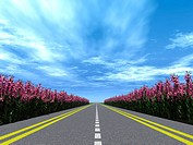 Highway with a marking with blossoming flowers on a roadside. Brightly blue